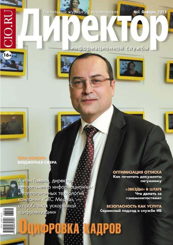 Обложка книги Директор информационной службы №01/2013, автор системы, Открытые