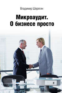 Шерягин, Владимир  - Микроаудит. О бизнесе просто