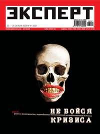 - Эксперт №41/2008