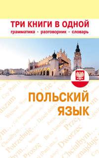 Отсутствует - Польский язык. Три книги в одной. Грамматика, разговорник, словарь