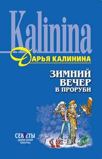 Калинина, Дарья  - Зимний вечер в проруби