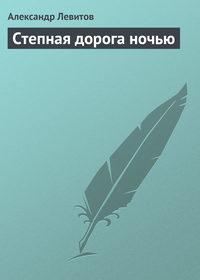 Левитов, Александр  - Степная дорога ночью