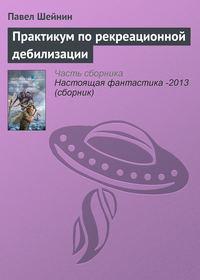 Шейнин, Павел  - Практикум по рекреационной дебилизации