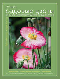 Лысиков, Андрей  - Лучшие садовые цветы. Большая иллюстрированная энциклопедия