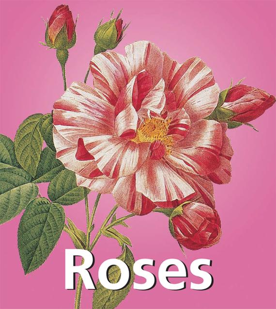 Victoria Charles Roses natura siberica детское увлажняющее молочко детское увлажняющее молочко
