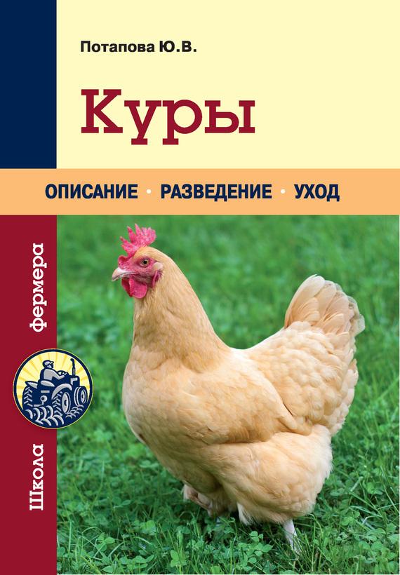 Куры ( Ю. В. Потапова  )