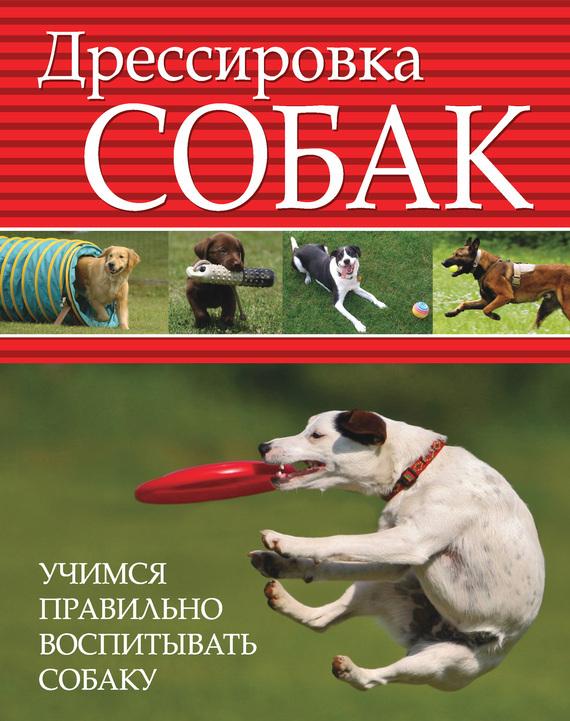 Дрессировка собак. Учимся правильно воспитывать собаку случается внимательно и заботливо