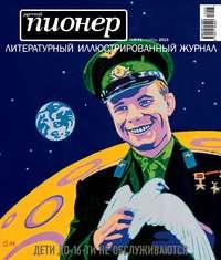 - Русский пионер №8 (41), ноябрь 2013