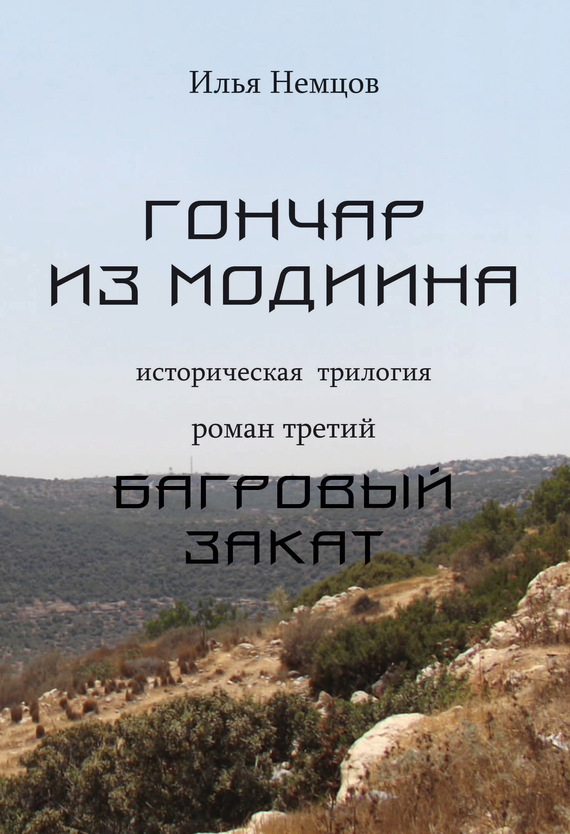 Илья Немцов Багровый закат