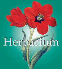 Carl, Klaus   - Herbarium