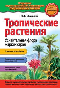 - Тропические растения. Удивительная флора жарких стран