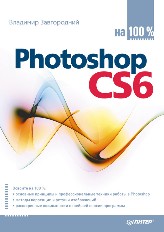 Владимир Завгородний Photoshop CS6 на 100%