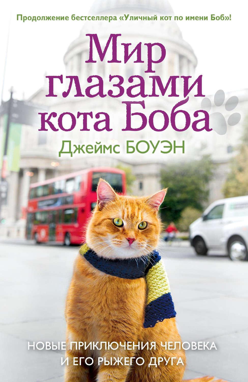 Кот из библиотеки скачать