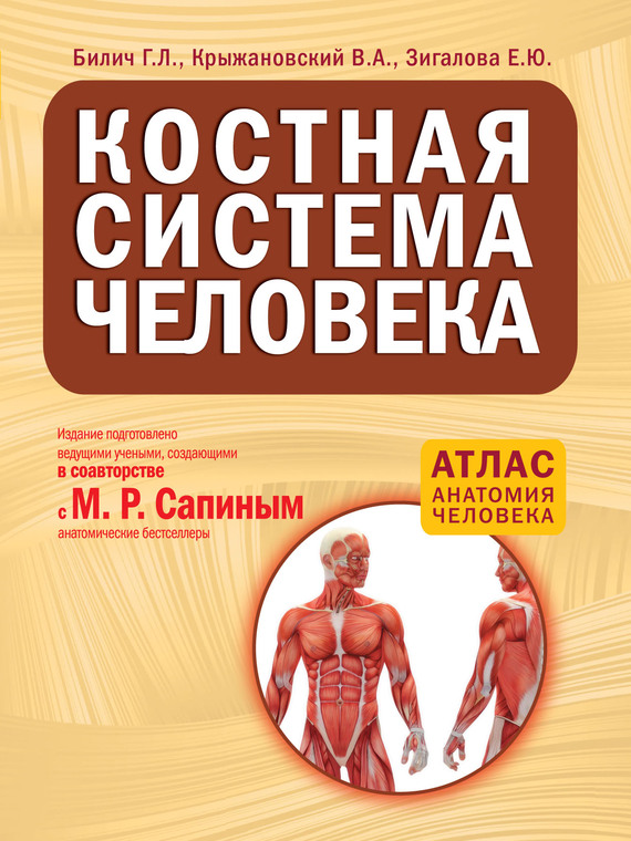 Г. Л. Билич Костная система человека шу л радуга м энергетическое строение человека загадки человека сверхвозможности человека комплект из 3 книг