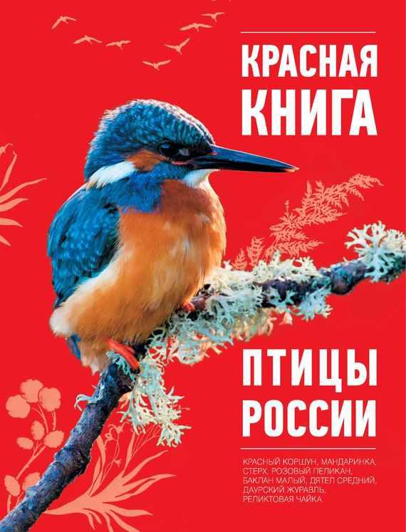 Большая красная книга скачать бесплатно