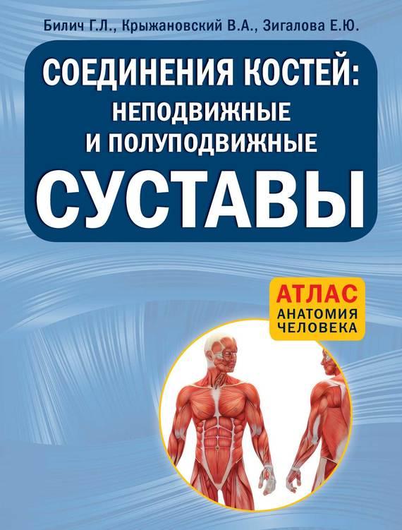 Г. Л. Билич Соединения костей: неподвижные и полуподвижные суставы анна спектор большой иллюстрированный атлас анатомии человека