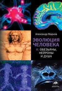 Марков, Александр Владимирович  - Обезьяны, нейроны и душа
