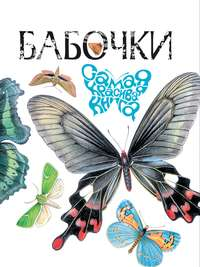 Бабенко, В. Г.  - Бабочки