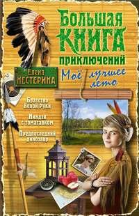 Нестерина, Елена  - Большая книга приключений. Мое лучшее лето (сборник)
