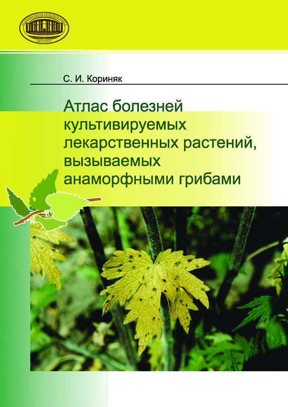 занимательное описание в книге С. И. Кориняк