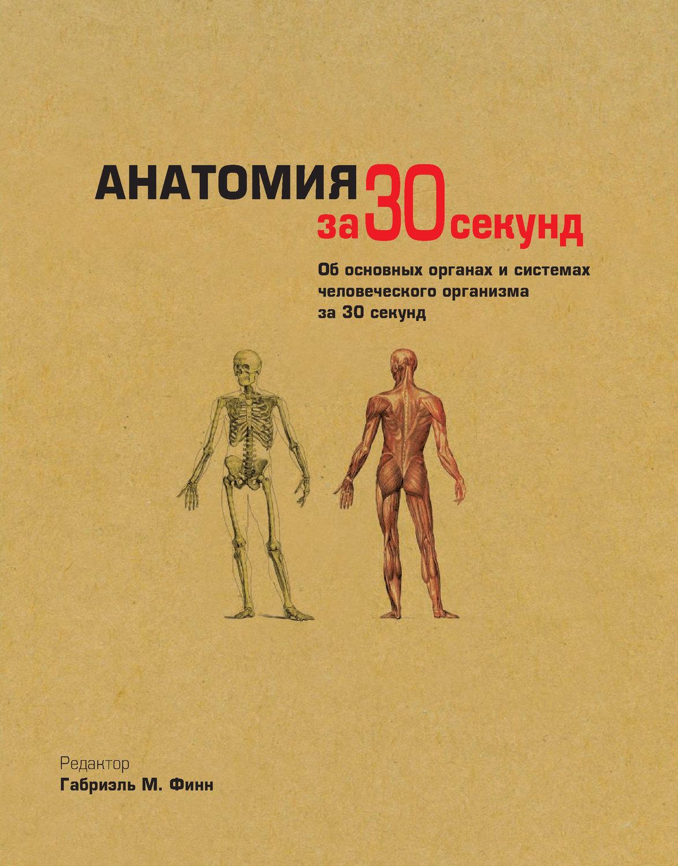 Анатомия за 30 секунд скачать книгу