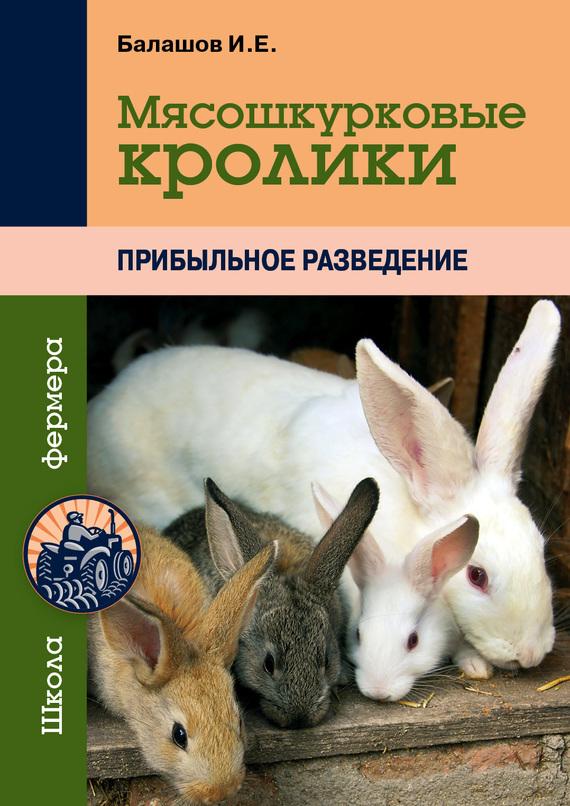 Мясошкурковые кролики. Прибыльное разведение изменяется романтически и возвышенно