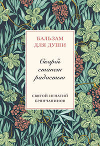 Брянчанинов, Святитель Игнатий  - Скорбь станет радостью
