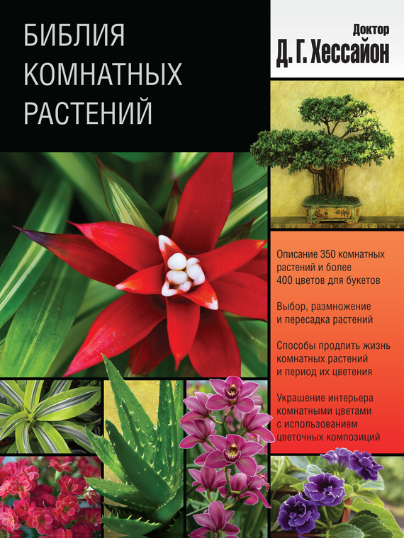 Библия комнатных растений случается активно и целеустремленно