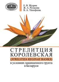 Рупасова, Ж. А.  - Стрелитция королевская (Strelitzia reginae Banks) в условиях защищенного грунта в Беларуси