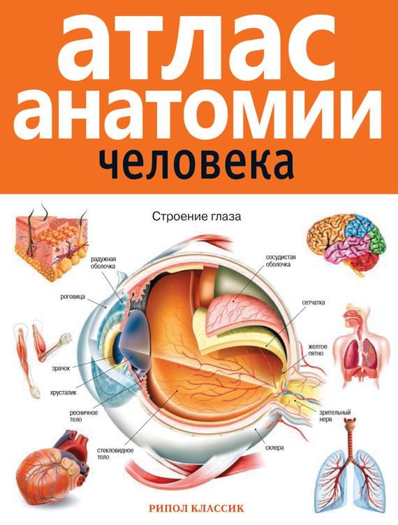 Отсутствует Атлас анатомии человека иллюстрированный атлас анатомии и физиологии человека
