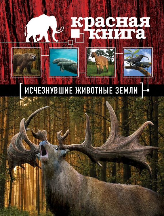 Дмитрий Лукашанец бесплатно