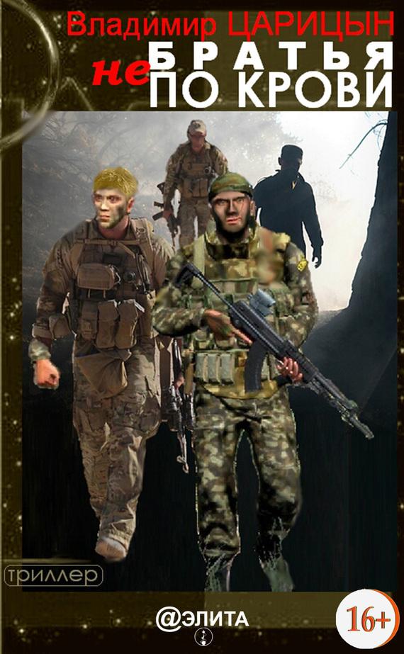 Владимир Царицын - Братья не по крови