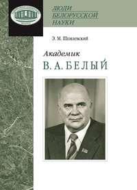 Шпилевский, Э. М.  - Академик В. А. Белый