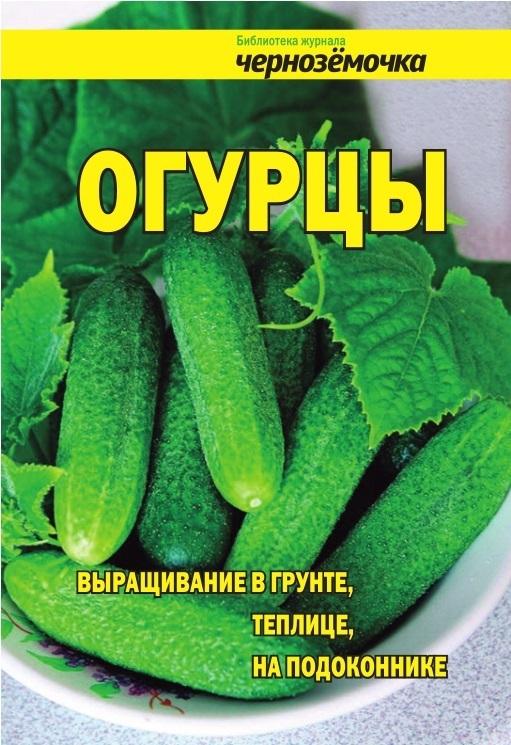 Отсутствует Огурцы. Выращивание в грунте, теплице, на подоконнике аптека на грядке и на подоконнике