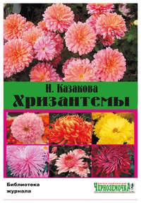 Казакова, Н.  - Хризантемы