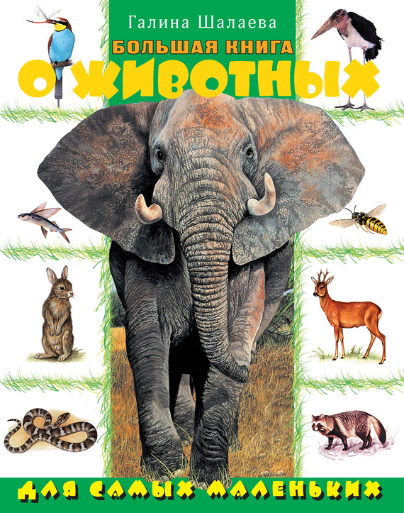 Г. П. Шалаева Большая книга о животных для самых маленьких бологова в ред моя большая книга о животных 1000 фотографий