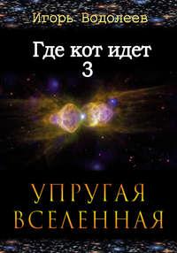 Водолеев, Игорь  - Где кот идет 3. Упругая вселенная