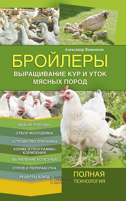 Обложка книги Бройлеры. Выращивание кур и уток мясных пород, автор Ващенков, Александр
