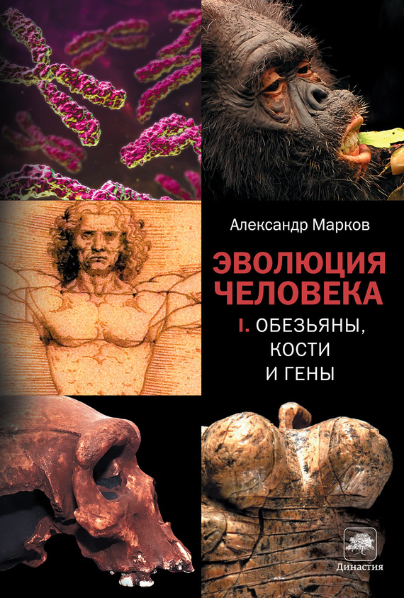 Александр Марков Обезьяны, кости и гены