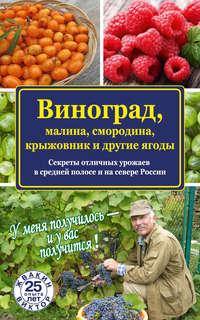 Жвакин, Виктор  - Виноград, малина, смородина, крыжовник и другие ягоды