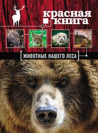 - Красная книга. Животные нашего леса