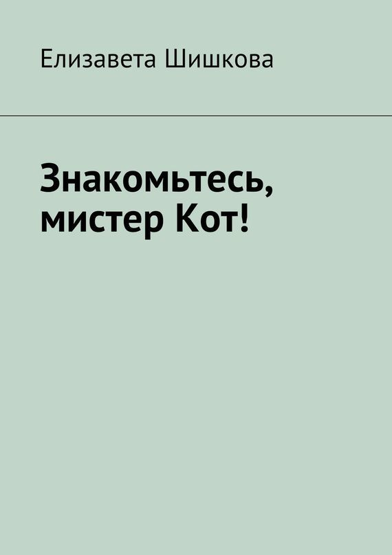 Елизавета Шишкова Знакомьтесь, мистерКот! тасбулатова диляра керизбековна кот консьержка и другие уважаемые люди