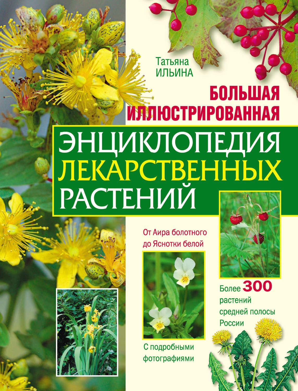 Книга синяя трава скачать бесплатно fb2