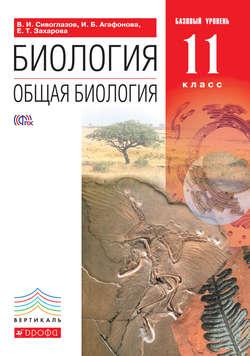 Читать книги онлайн классика литература