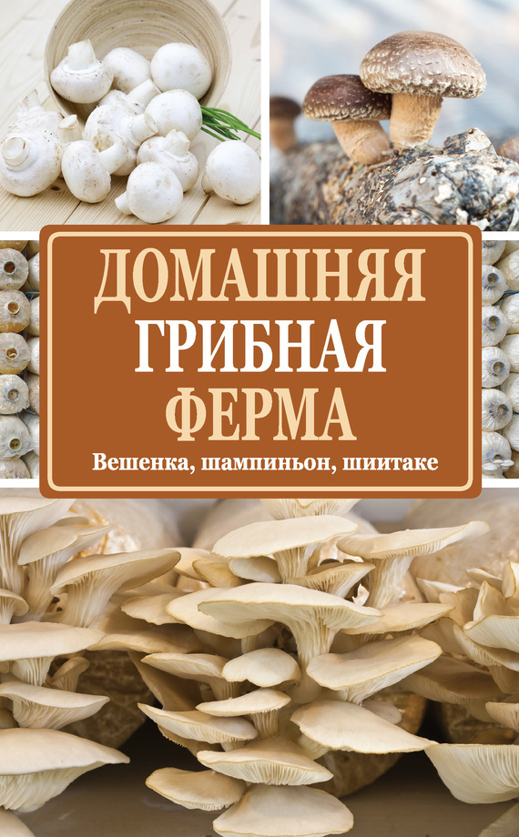 Нина Богданова Домашняя грибная ферма. Вешенка, шампиньон, шиитаке мицелий грибов вешенка рожковидная на 16 древесных палочках