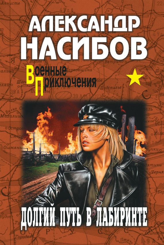 Александр Насибов Долгий путь в лабиринте