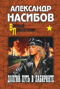 Насибов, Александр  - Долгий путь в лабиринте
