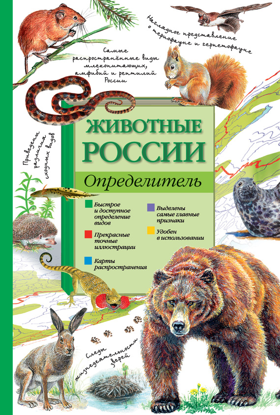 П. М. Волцит Животные России. Определитель какой фотопарат для сьемок на природе