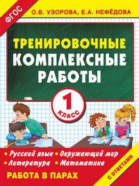 - Тренировочные комплексные работы в начальной школе. 1 класс