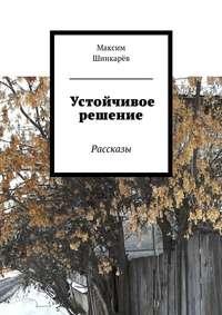 Шинкарёв, Максим  - Устойчивое решение